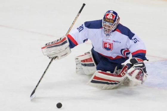 slovaci na ms v hokeji do 18 rokov deklasovali francuzov a zaistili si postup do stvrtfinale
