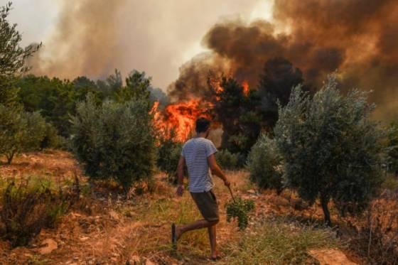 lesne poziare suzuju juznu cast turecka vyziadali si uz sest obeti na ludskych zivotoch