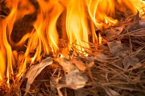sicilia bojuje s desiatkami lesnych poziarov miestni predstavitelia ziadaju rim o pomoc